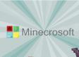 Minecraft vendu